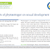 Efeitos do fitoestrogênio no desenvolvimento sexual.