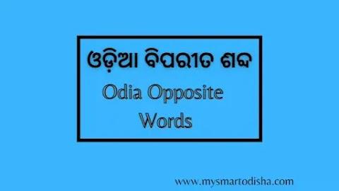 Opposite Words in Odia, Odia Biparita Sabda