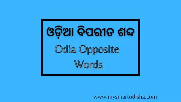 Odia Biparita Word PDF