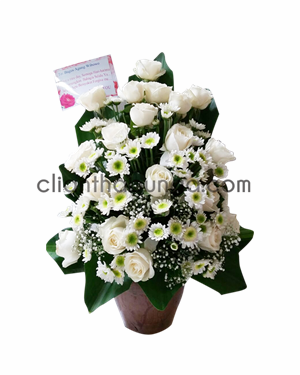 Bunga Meja WP-4