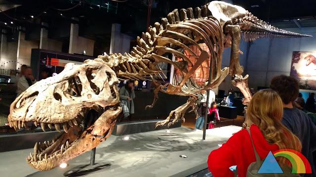Exposición T-Rex en CosmoCaixa Barcelona