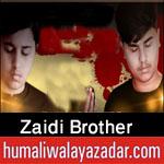 https://www.humaliwalayazadar.com/2020/08/zaidi-brother-nohay-2021.html