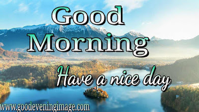 Good morning with nature images download