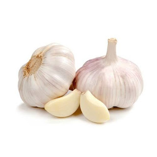 SCIENTISTS WORKING ON ANTI COVID DRUGS USING GARLIC ESSENTIAL OIL