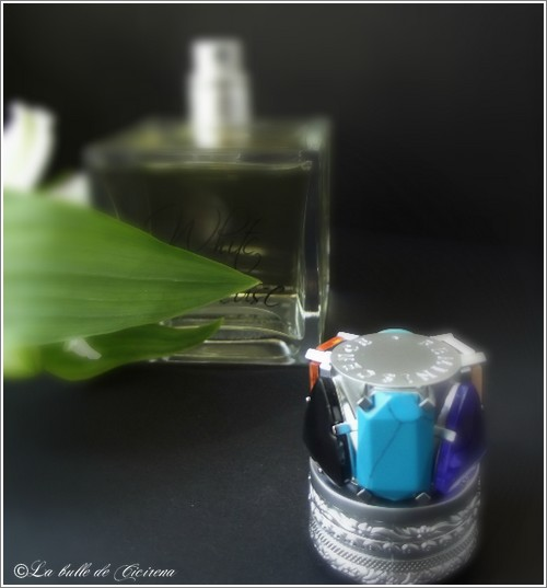 Parfums Reminiscence
