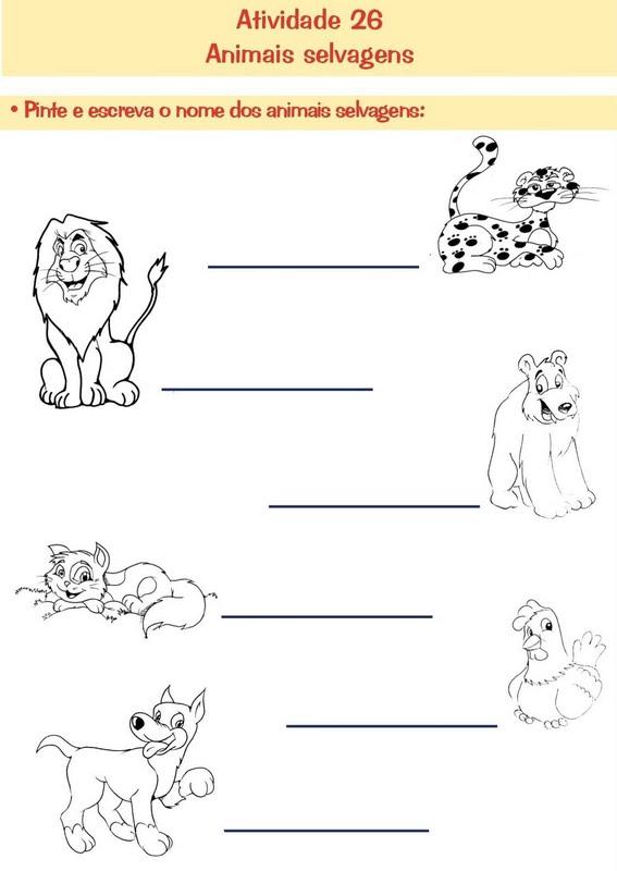 Atividades Animais Selvagens