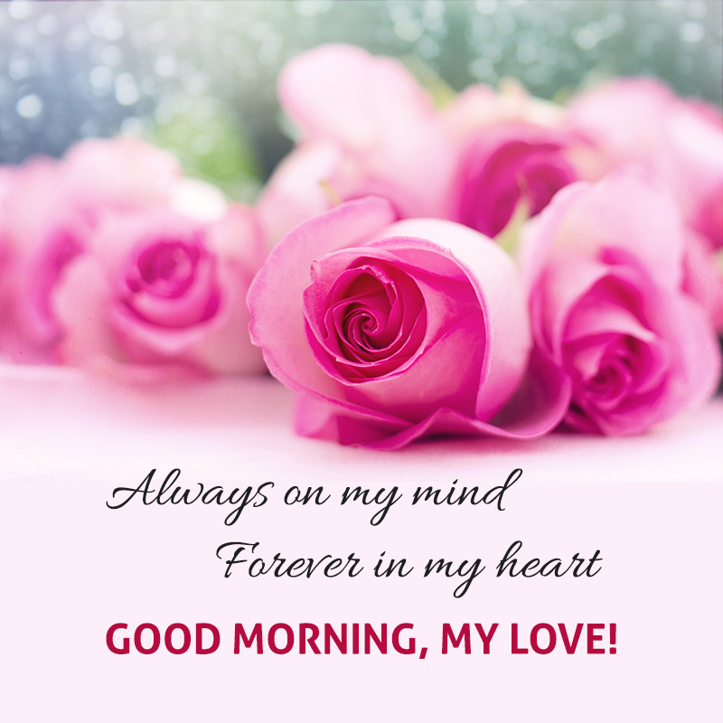 HappySun Mobile Romantic Good Morning Pictures For The One You Love Classy Good Morning Romantic Images For Love