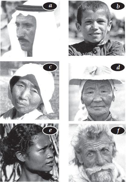 Karakteristik Benua Asia (Letak Astronomis dan Geografis Benua Asia, Batas-batas Benua Asia, Luas Benua Asia, Bentang Alam dan Iklim Benua Asia)