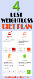 4 Best Weight Loss Diet Plans