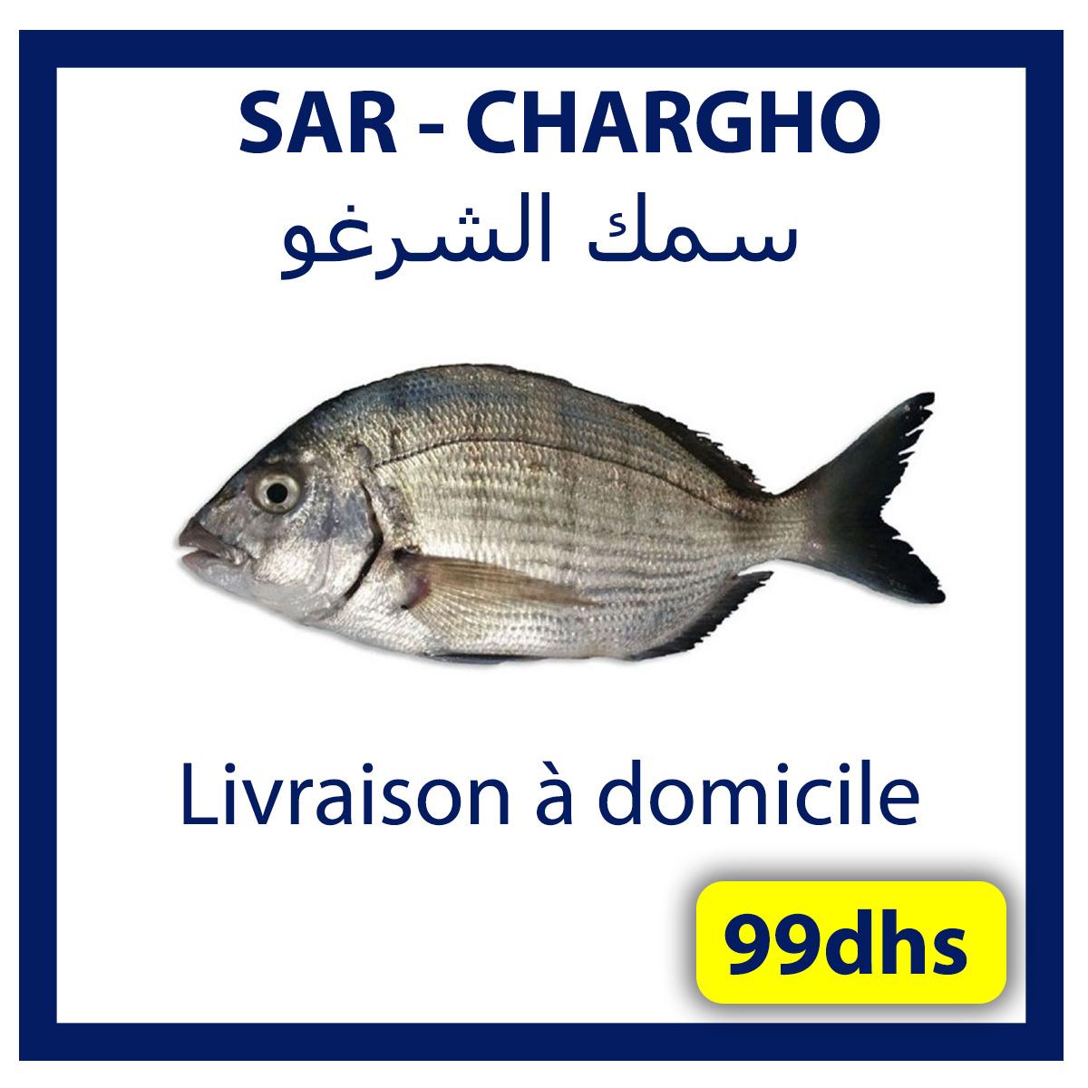 livraison poisson frais casablanca - Boutique de vente et achat en
