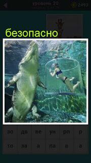 плавает крокодил а рядом в сетке безопасно плавает женщина 667 слов 20 уровень