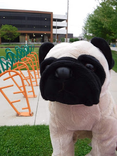 a pug appears next to a bike rack shaped like carrots. a large modern parking garage is visible in the background