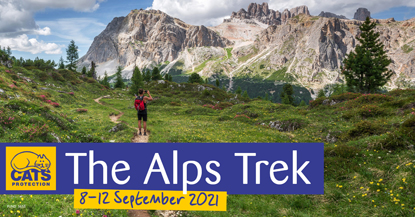 A walker in front of the Alps mountain range with 'The Alps Trek 8-12 September 2021' wording