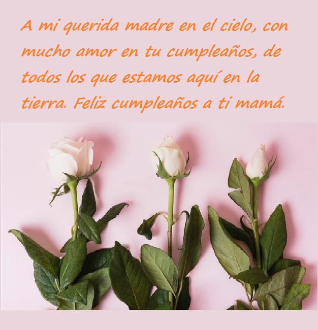 Frases De Cumpleaños Para Una Madre 200 Mensajes2019