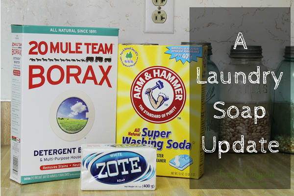 Switching from Fels Naptha to Zote in my laundry soap, a why in A Laundry Soap Update. It's probably not what you think. frogslilypad.net