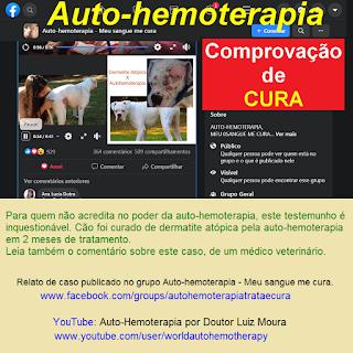 RELATO DE CASO COMPROVANDO A EFICÁCIA DA AUTO-HEMOTERAPIA EM DERMATITE ATÓPICA CANINA