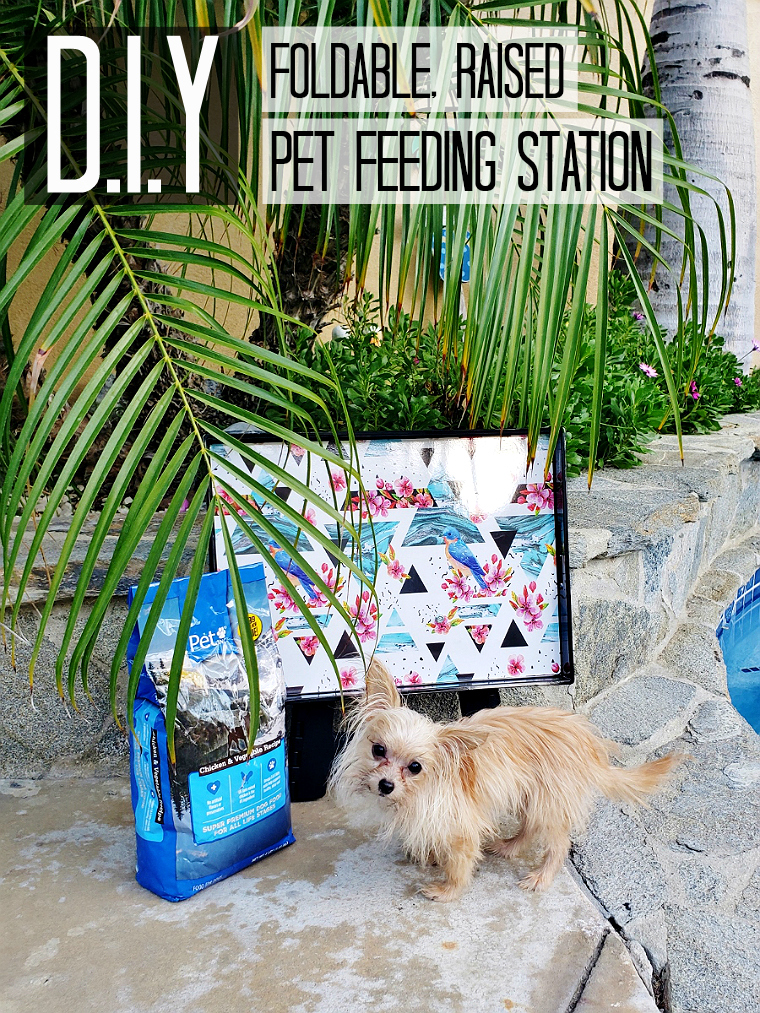 D.I.Y Foldable, Raised, Pet Feeding Station- #DoThe99 #99Obsessed #AD