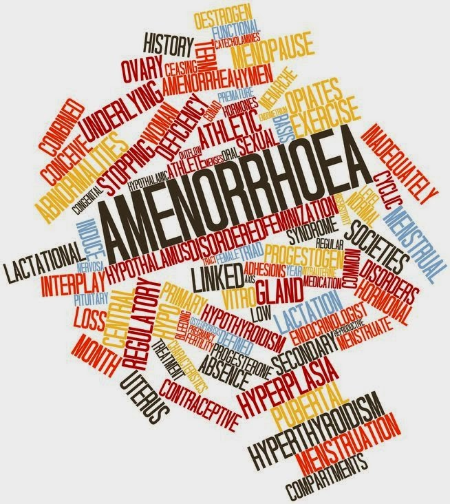 Post Pill Amenorrhea Natural Remedies