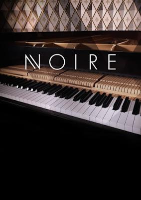 Cover Native Instruments - Noire (Kontakt)