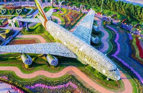 Çiçek Airbus