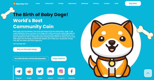 Screenshot Website Baby Doge Coin