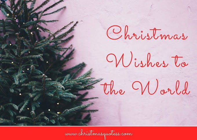 Christmas Wishes to the World