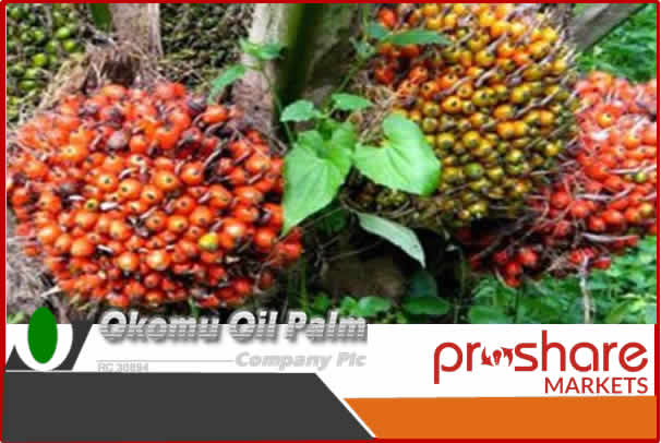 Business Today: Okomu oil declares N3 dividend per share