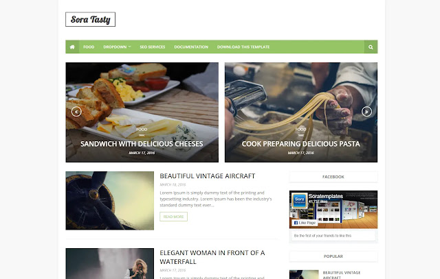 Sora Tasty Responsive Magazine Personal Blog Recipes Food Blog Cocking Blog Blogger Template Theme