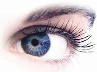 Penyebab Nyata  Mata Kiri Berkedut (Bawah atau Di Dalam)