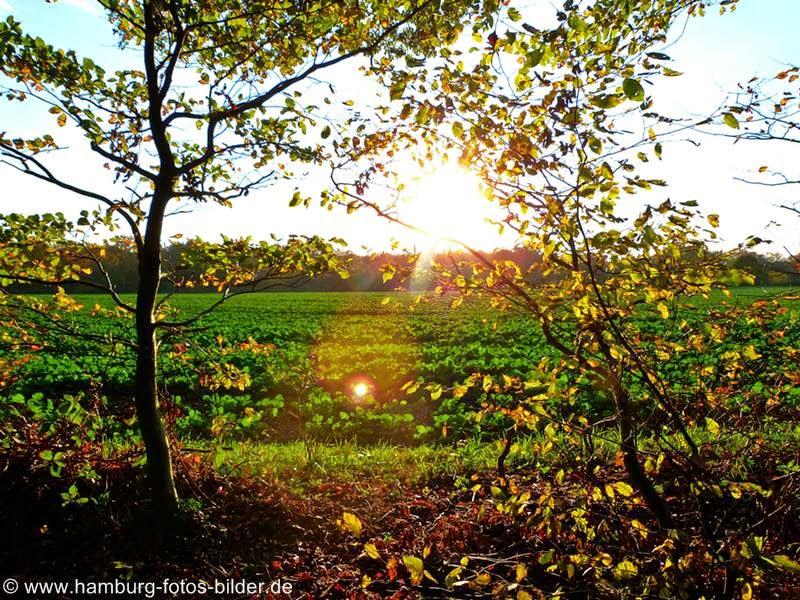 In Hamburg die Sonne im Herbst genießen