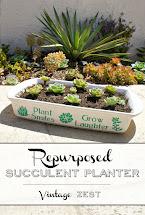 Diy Vases & Planters Tuesday #76 Diane'
