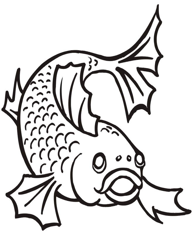 Rainbow Trout Coloring Page Animal Mandalas Coloring Pages Fish
