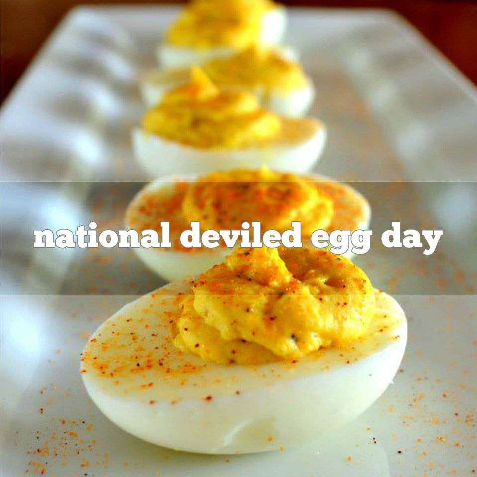 National Deviled Egg Day Wishes pics free download