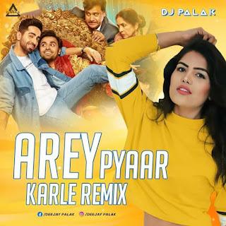AREY PYAAR KARLE - REMIX - DJ PALAK