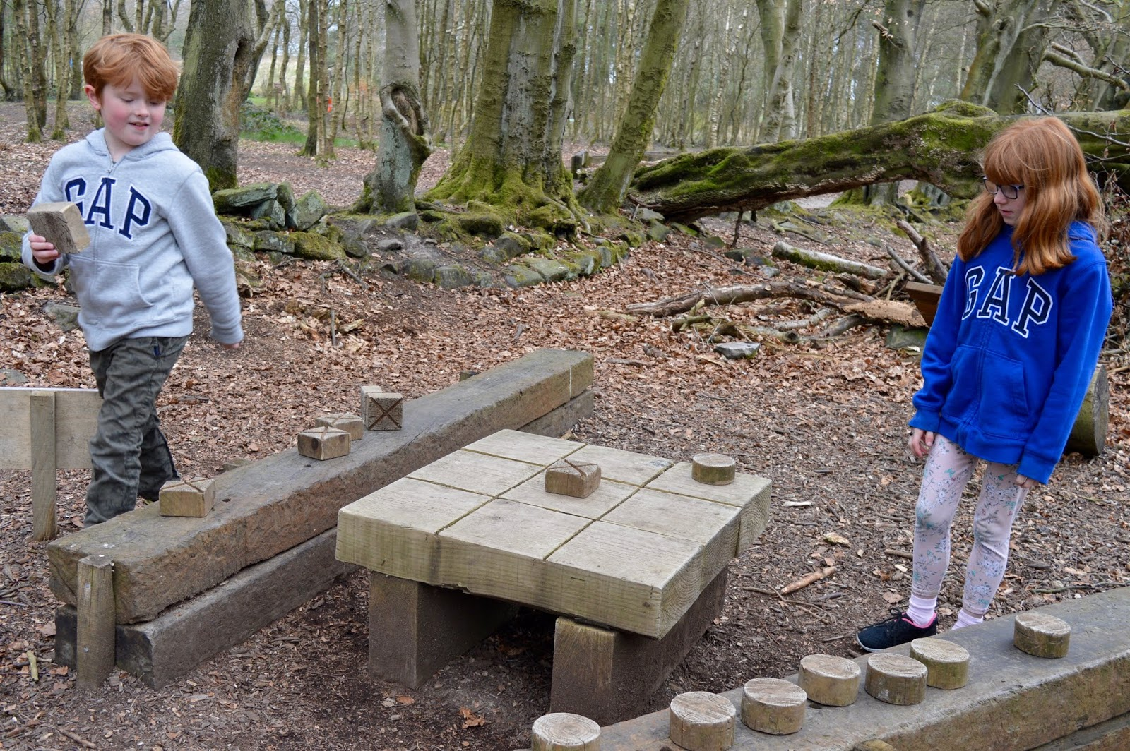 A Review of Darwin Forest & The Peak District with Tweens  - woodland games