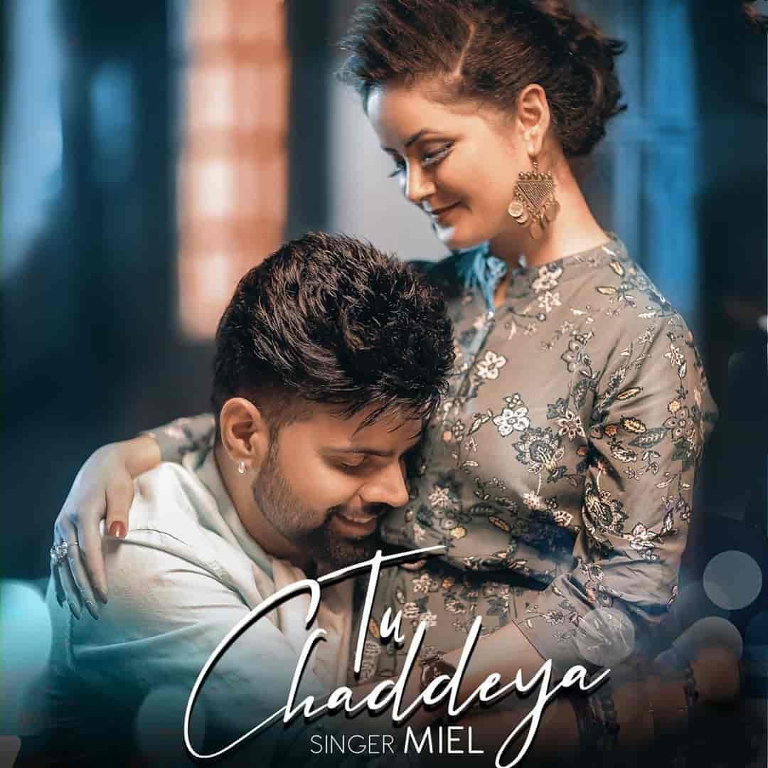 Tu Chaddeya Punjabi Song Image By Meil