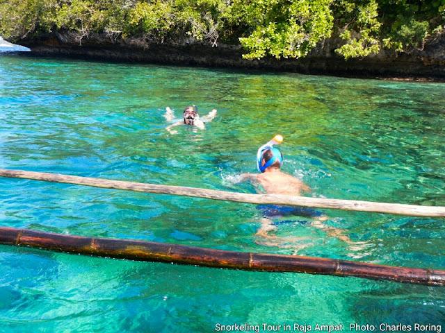 Wisatawan Jerman dan Prancis sedang snorkeling di Raja Ampat