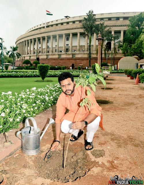 Ram Mohan Naidu Planting trees