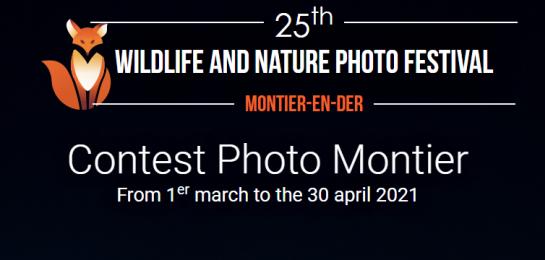 25th International Wildlife Photo Competition