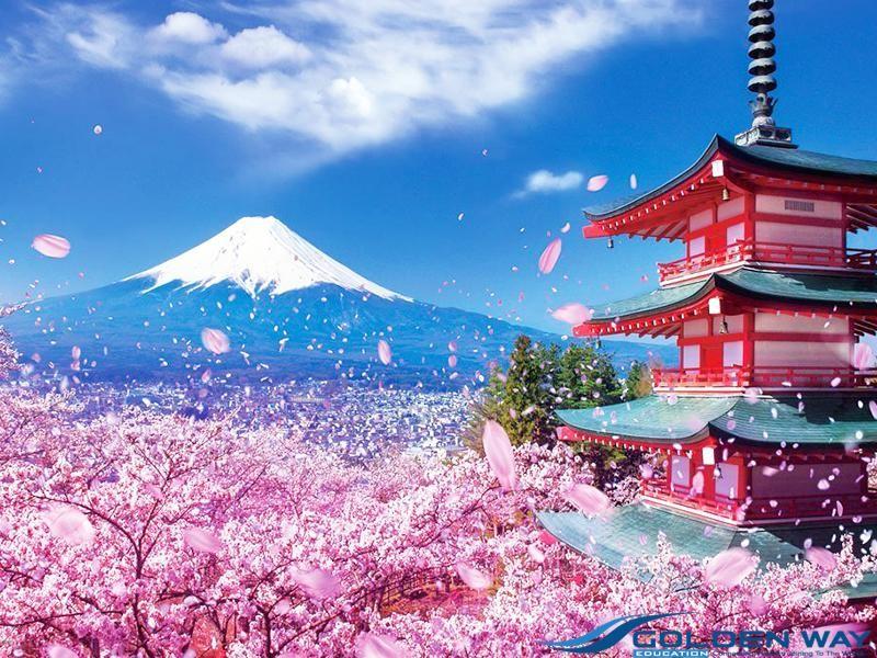 Du học ngành mỹ phẩm tại Nhật Bản rất tuyệt vời