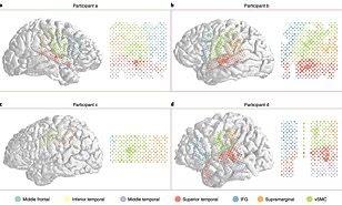برنامج ذكاء إصطناعي يُحول أنشطة الدماغ إلى نص مكتوب، تابع التفاصيل