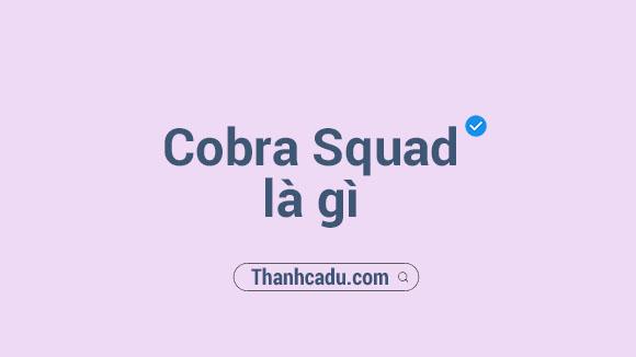 cobra squad la gi,iron team la gi,cobra squad vietnam la gi,cobra steven,cobra steven la gi,iron team,cobra high and low,cobra squad tuyen dung