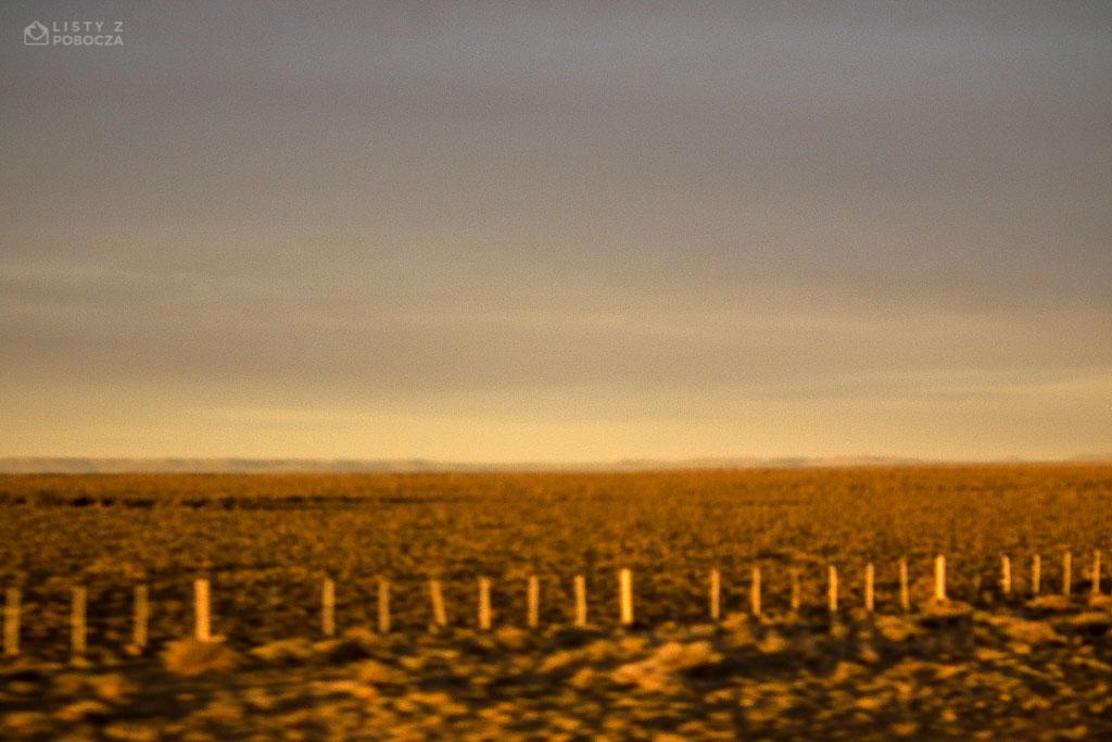 Pustkowia argentyńskiej Patagonii