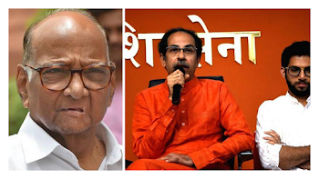 Shiv Sena to split from NDA ?