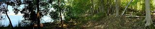 Pere Marquette Conservation Park