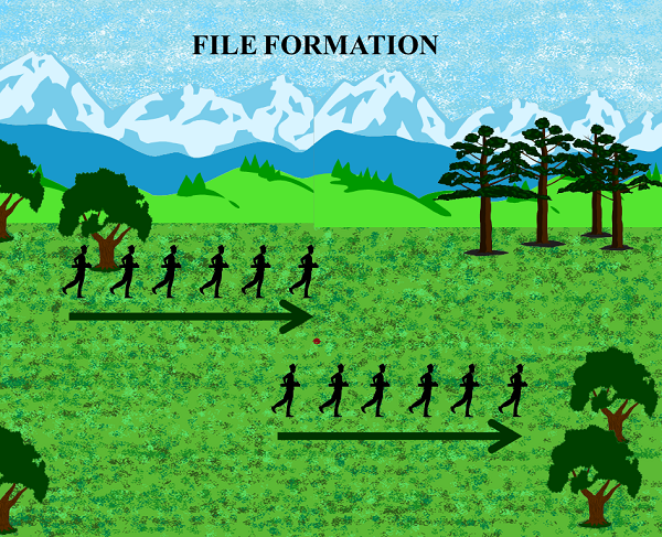 File Formation Image