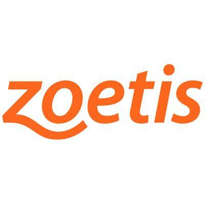 Zoetis Summer Internship in Egypt