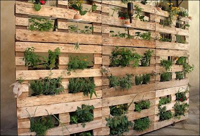 bancali-piante-arredo