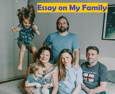 An Essay on My Family In English  | Essay on My Family For Class 1 to 3
