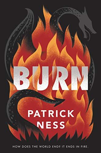 Burn Book pdf